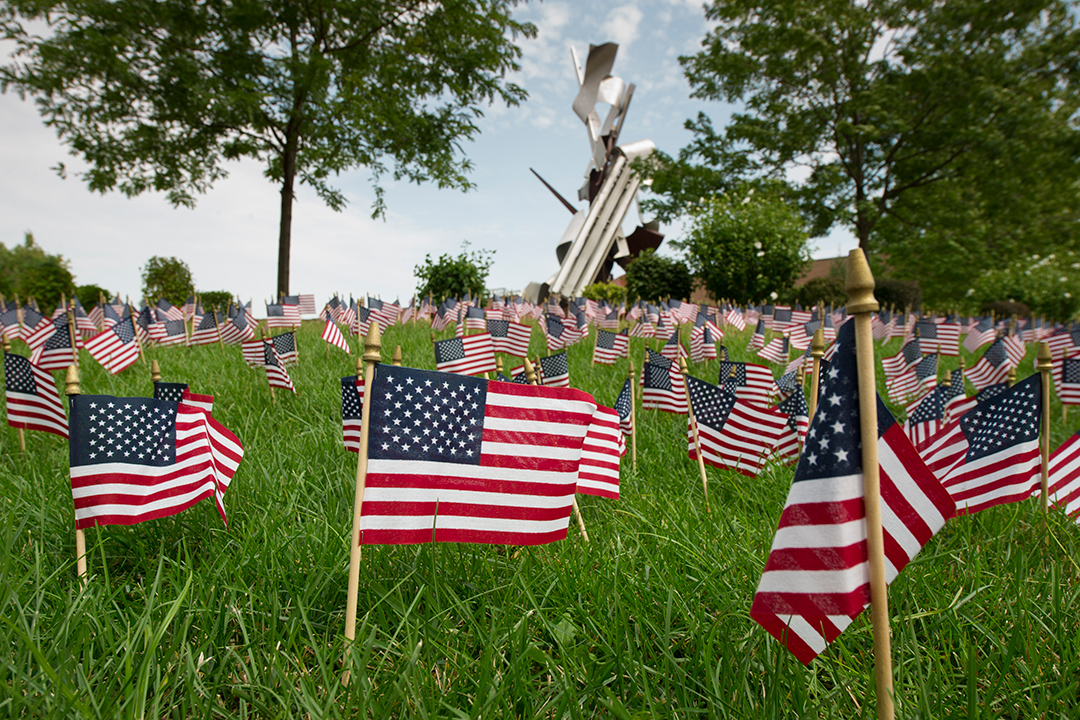 multiple small American flags planted in a lawn.