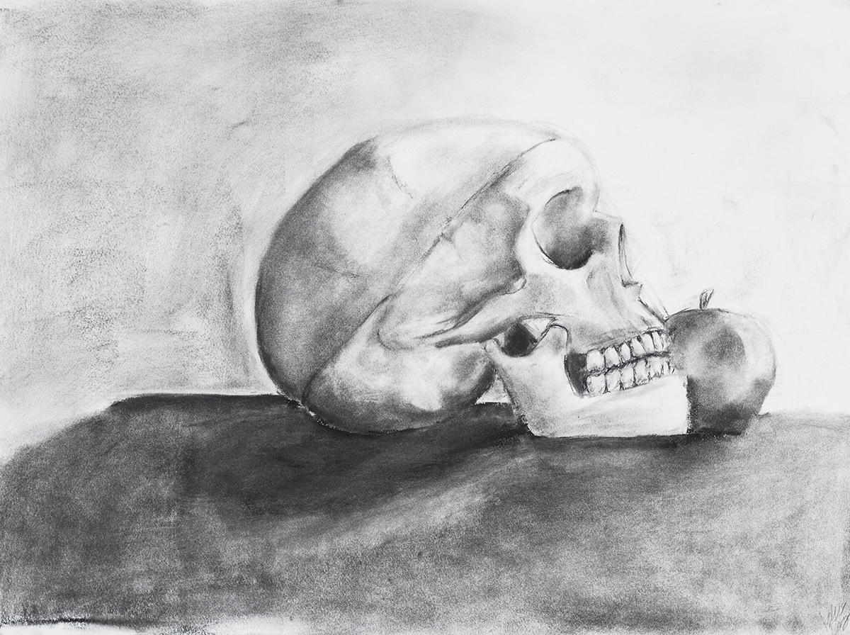 A drawing of a skull