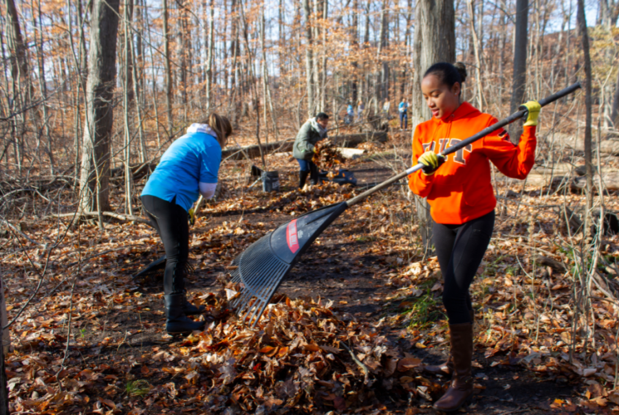 student raking leaves to clear trail