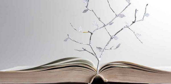 Graphic artwork of a paper tree coming out of an open book