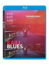 Lu bian ye can (Kaili Blues)