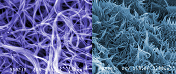 carbon nanotube micro images