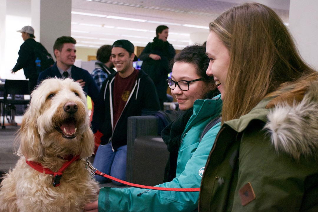 Therapy-Dogs-Event-Image_1.jpg