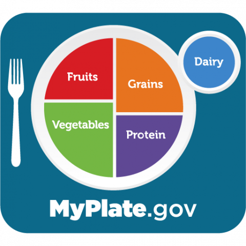 plate broken out into four sections (fruits, vegetables, grains, and protein) with a cup of milk