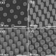 Evolution of GaAs Nanowire Morphology in Selective Area Epitaxy