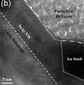 Site-Controlled VLS Growth of Planar Nanowires: Yield and Mechanism
