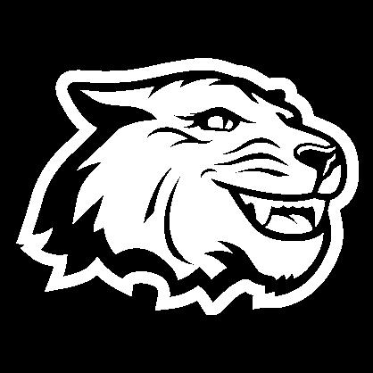 Gray and white Tiger spirit mark