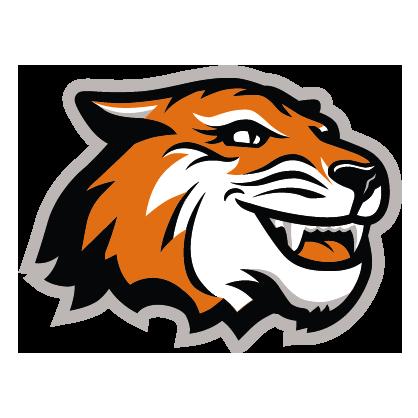 Black, orange, and white Tiger spirit mark