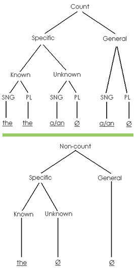 Two tree diagrams of articles, 1) count type specific and general, 2) non-count type specific and general