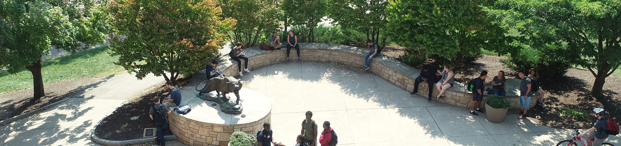 Arial photo of students sitting in the quad by the tiger statue