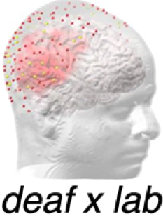 Image of head with red section highlighted and red dots over surface.