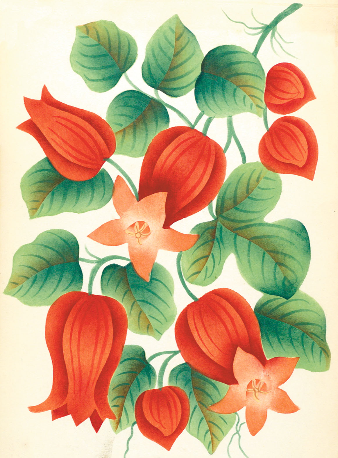 Greeting Cards: Flowers | RIT Press | RIT