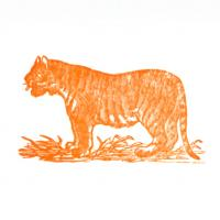 Letterpress Stationery, Tiger