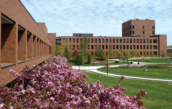 Rochester Institute of Technology | university, college of ...