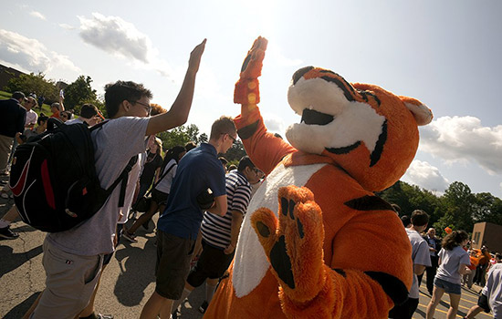 201709/tigerwalk2017.jpg