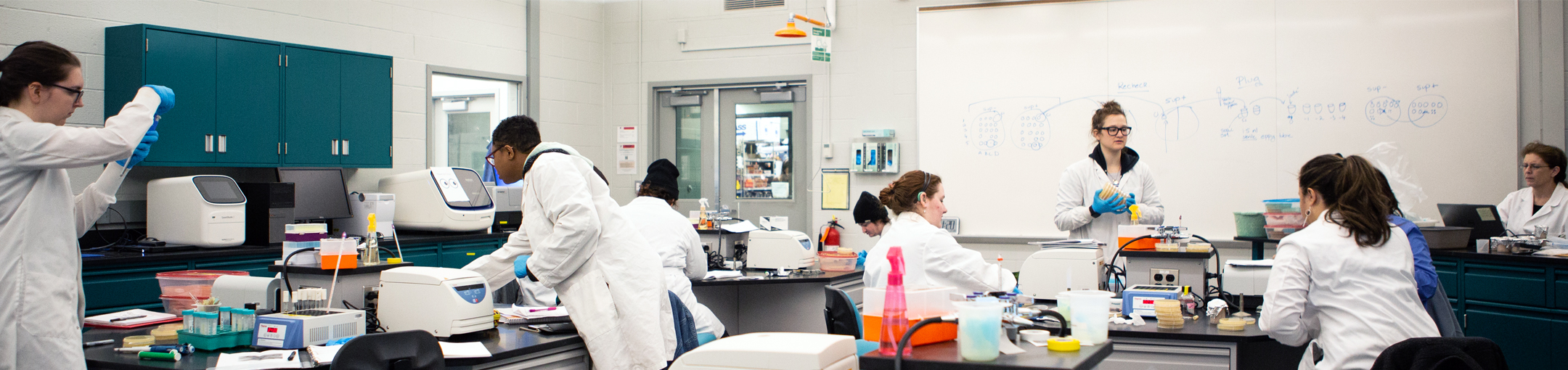 students working in genomics lab during class