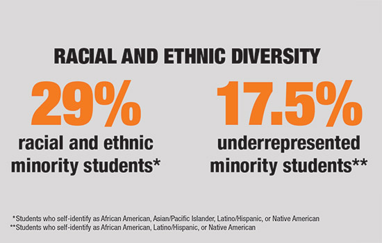 Infographic of Racial and Ethnic Diversity: 29% racial and ethnic minority students, 17.5% underrepresented minority students