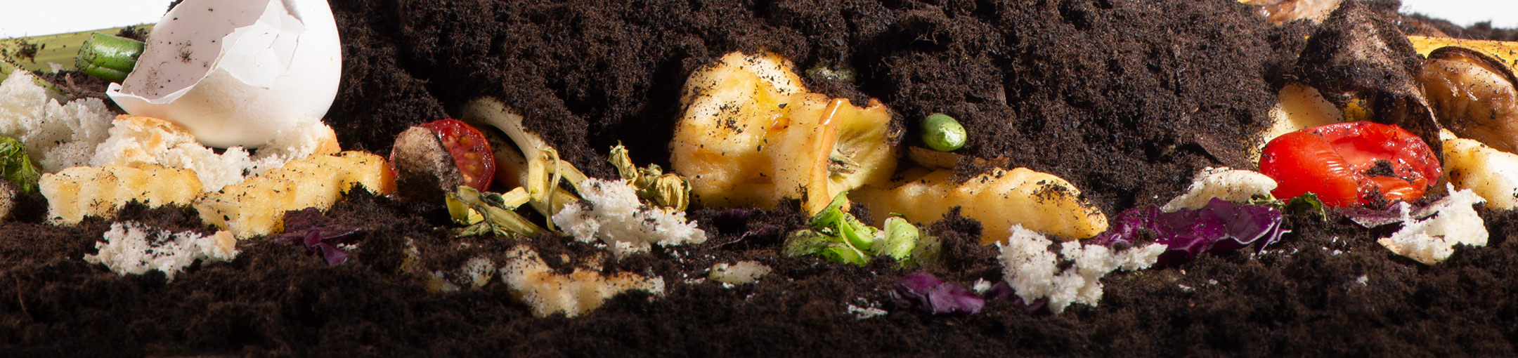 Food waste scraps and dirt.
