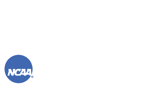 2010 NCAA Men's Frozen Four logo