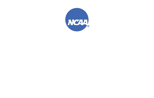 Logos for the 1983 and 1985 NCAA Ice Hockey Championships